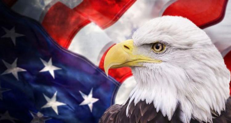 american flag eagle